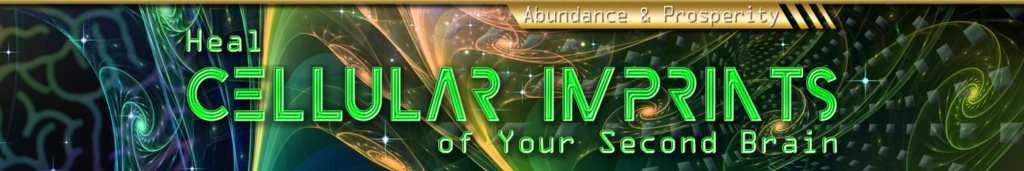 Heal Cellular Imprints of Your Second Brain – Abundance & Prosperity